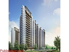 SS Banipal Real Estate Consultant in Dera bassi in City centre/Mani Majra/Zirakpur