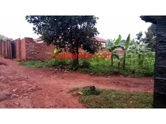 Serena Estate Property  Ug school list