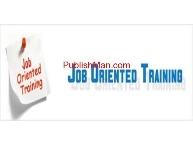 Job Oriented  individual IT DBA training  not class - 1/1