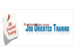 Job Oriented  individual IT DBA training  not class